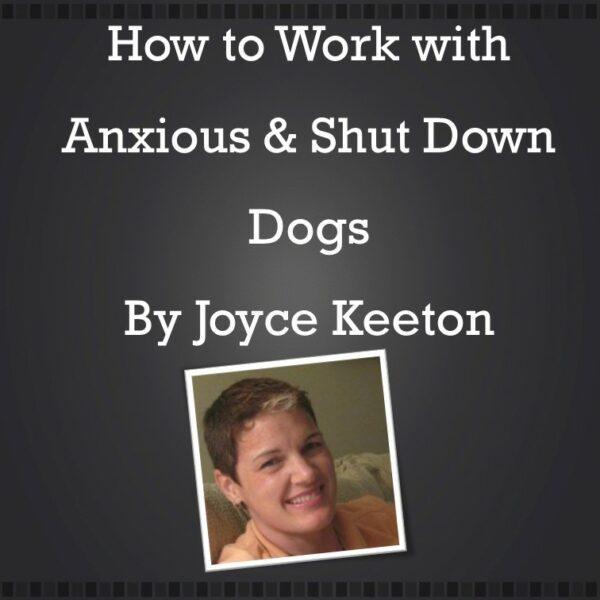 Joyce-shutdownwebinarJFbarebones