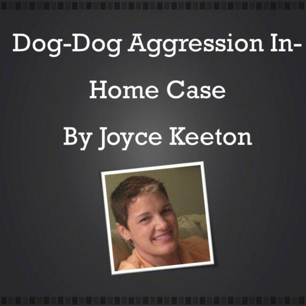 Joycedogdog-webinarJFbarebones
