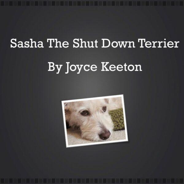 Sasha-Joyce